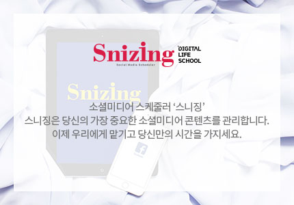 SNIZING Inc